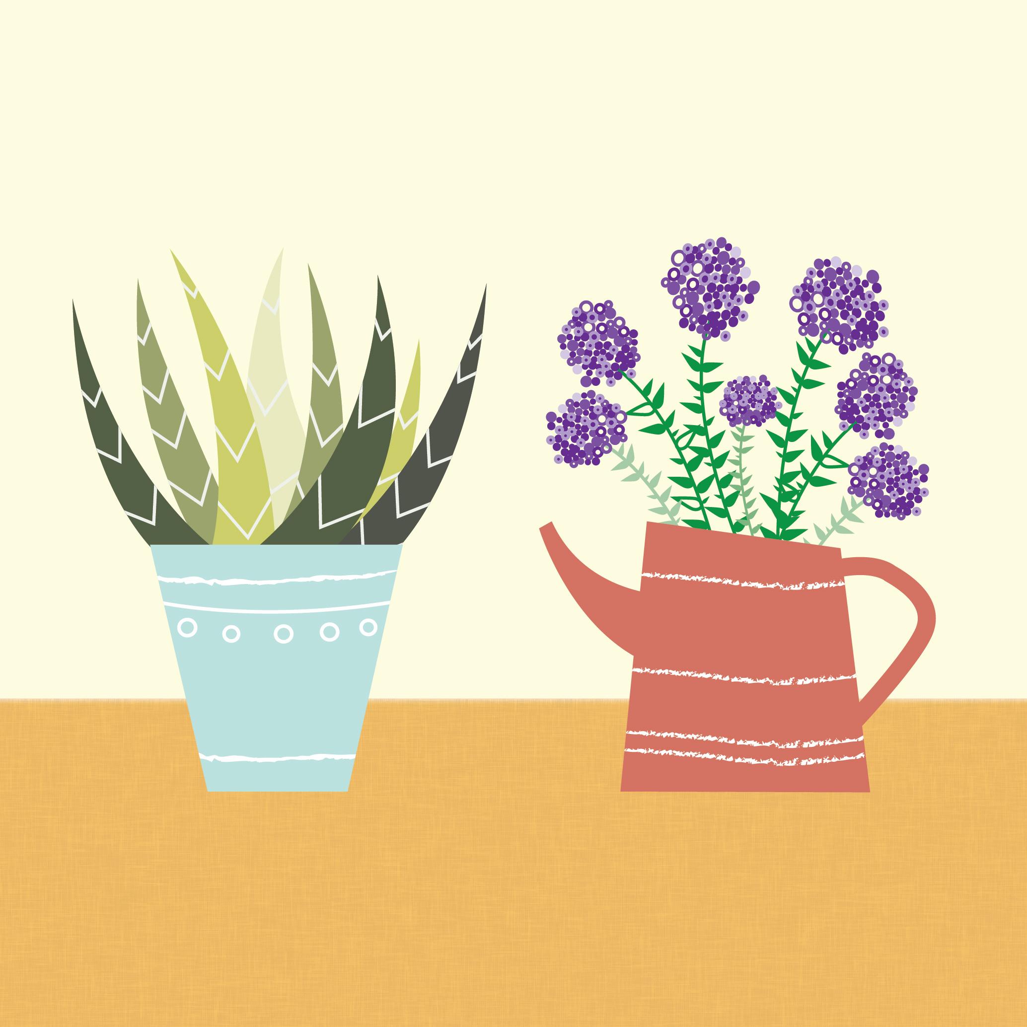 Postals de plantes il·lustrades